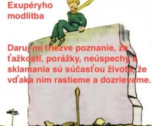 Exupery-citat6
